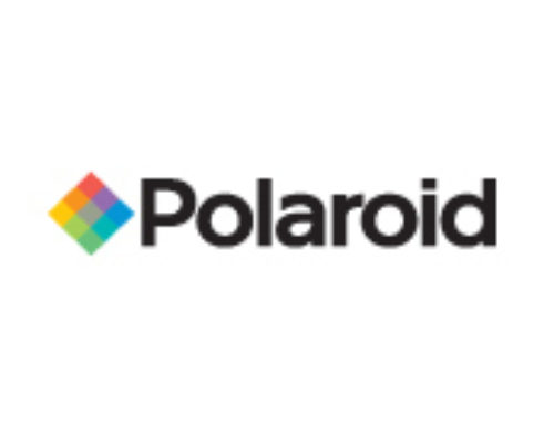 Polaroid — Executive Management